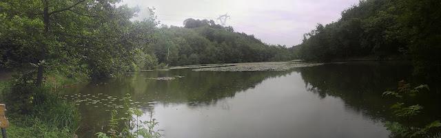 panorama de l'étang Bideau à Saint Anne sur Gervonde 1