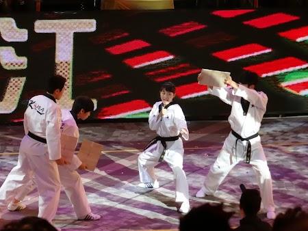 Parada Anul Nou Chinezesc: Luptatoare taekwondo