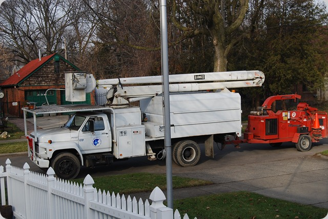 Our City's Tree Trimming Equipment