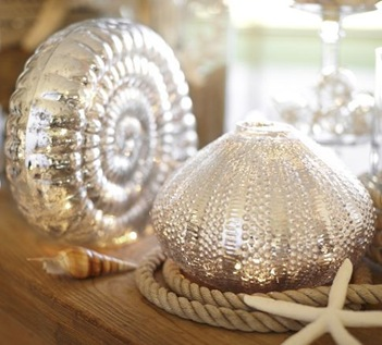 pottery barn shells