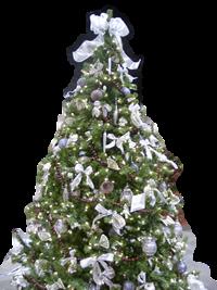 家谱是树装饰器或树种植者