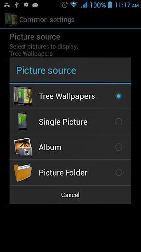 玩娛樂App|樹動態壁紙免費|APP試玩