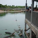 Тайланд 12.05.2012 6-00-47.JPG