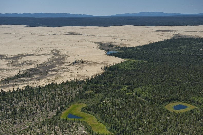 great-kobuk-sand-dunes-5