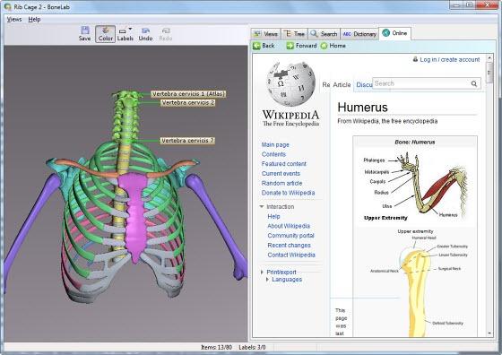 Free Interactive 3D Human Anatomy Software - Instant Fundas