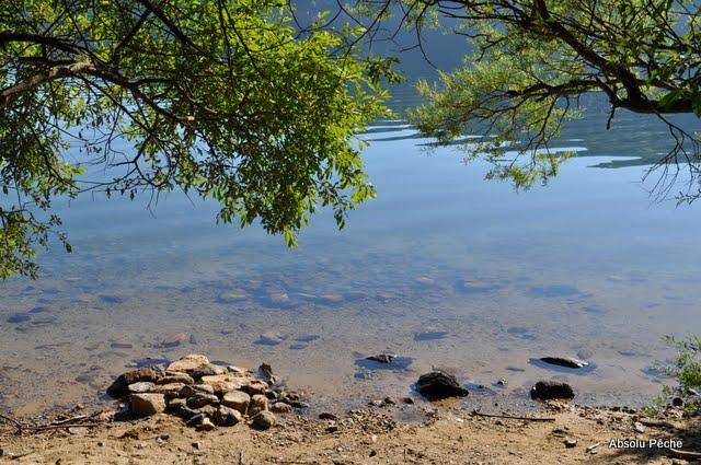 Lac d'Issarlès photo #490