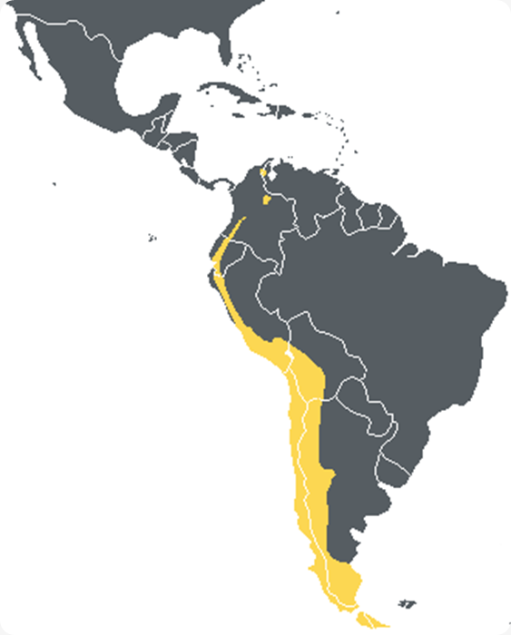 AndeanMap
