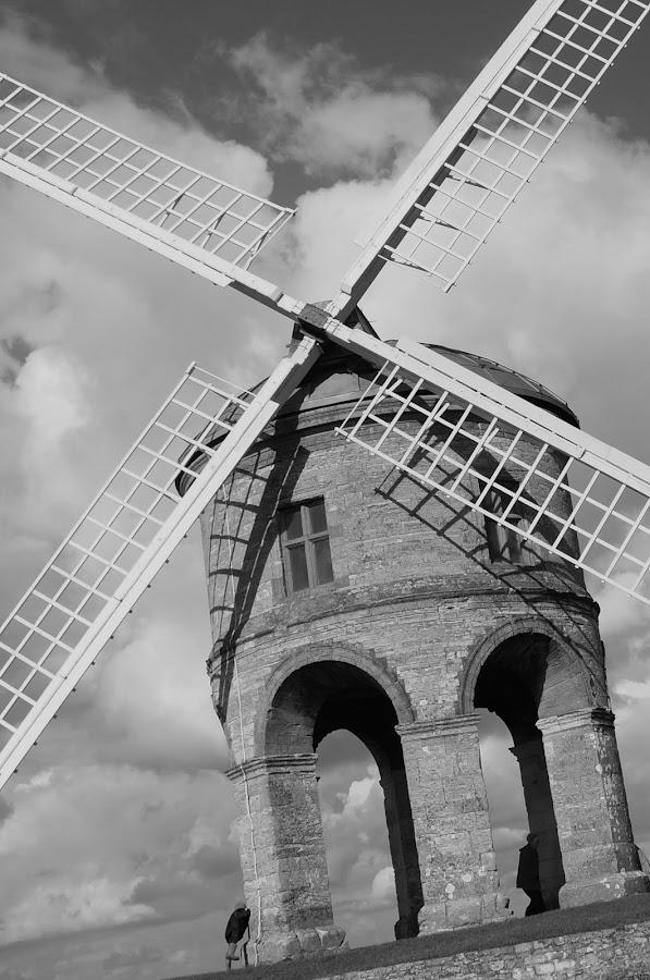 by Debbie Lawson - Black & White Buildings & Architecture
