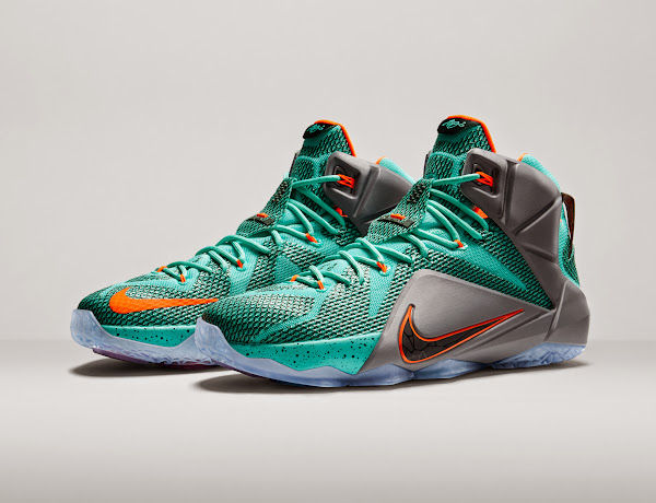 info for 02d5b e98bb LeBron XII