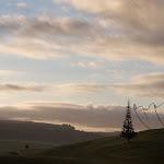 gibbs-farm-dawson_04.jpg