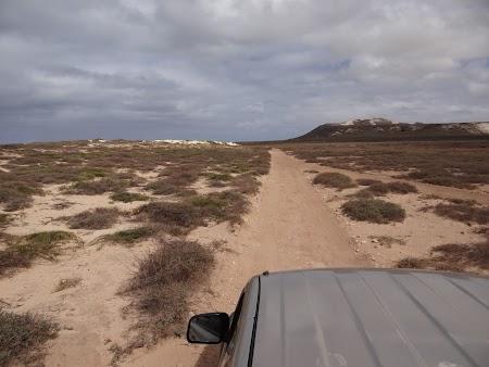 26. Printre dune.JPG