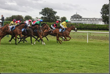 29_08_2014-17_56_51-3582Thirsk Race Course