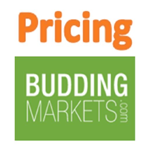 Pricing LOGO-APP點子