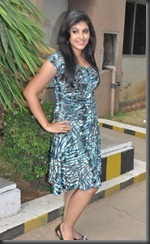Anjali at Kalakalappu Press Meet Stills