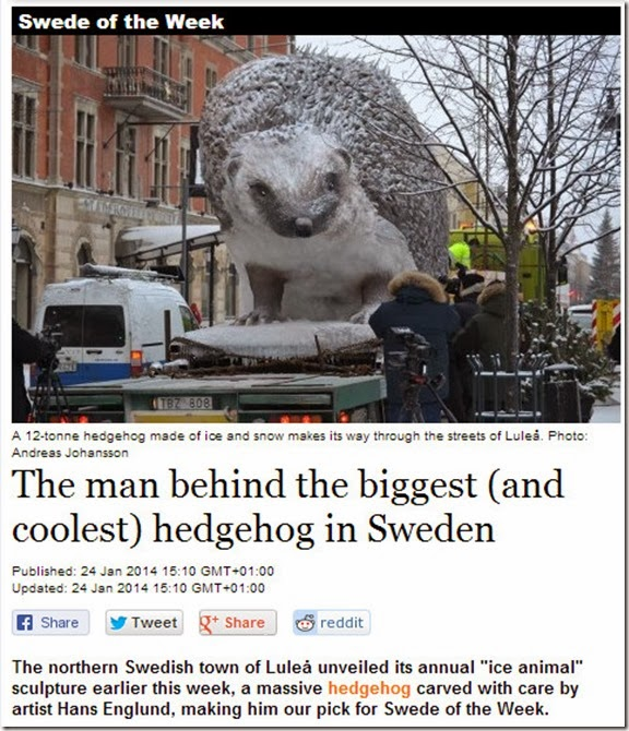 hedgehog swede