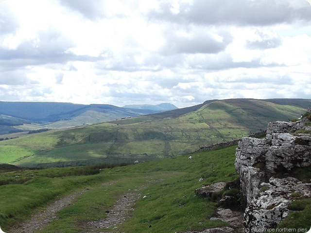 ingleborough from shunner fell