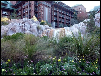 17 - Visiting the Wilderness Lodge