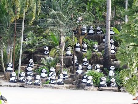 28. panda de plastic.JPG