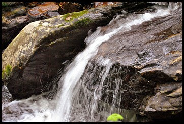 25e - Anna Ruby Falls Trail - Rusing water below