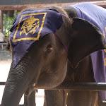 Тайланд 21.05.2012 7-47-52.JPG
