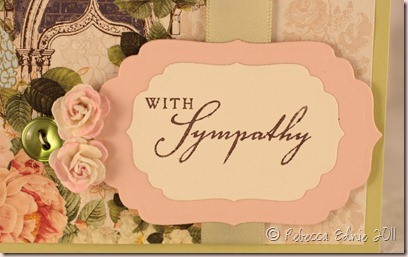 websters simple sympathy a2 closeup