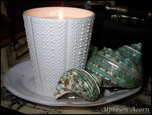 Sit Back Light The Beach Candle Sip On A Tail And Experience With Nest S Latest Collection
