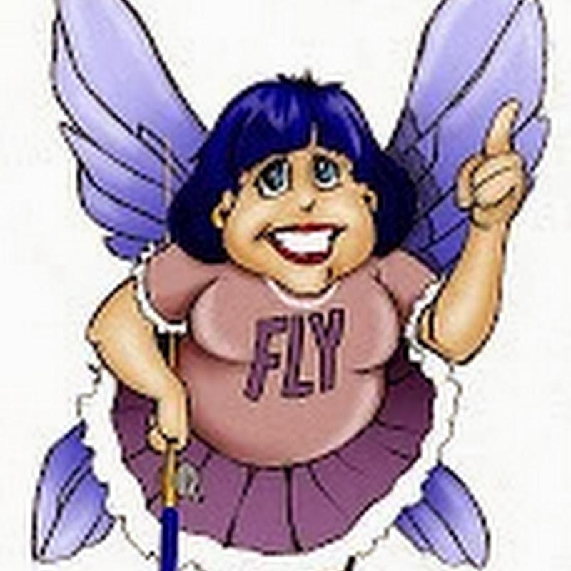 Sistema FlyLady