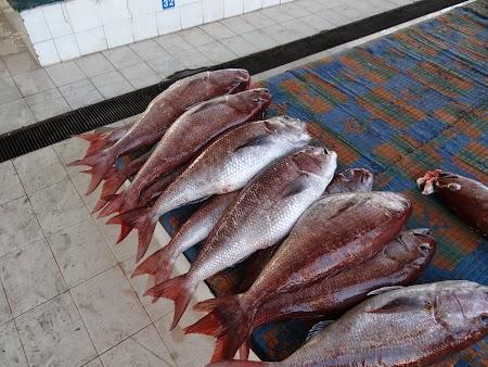 Piata de peste Muscat Oman