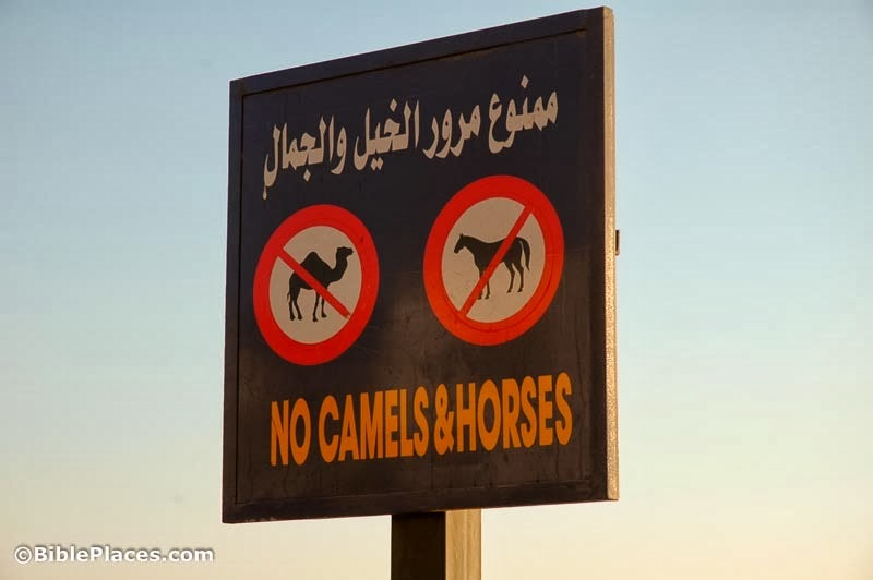 [No-camels-and-horses-sign-in-Dahab-t%255B2%255D.jpg]