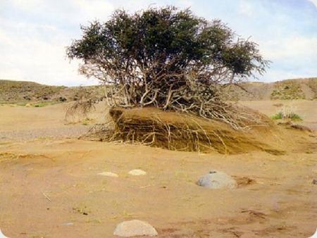 desierto_patagonico2