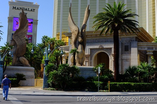 Travel Bunny Las Vegas Usa