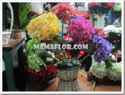 mamaflor-3382