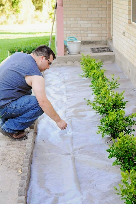 A DIY landscaping tutorial for adding boxwoods or plants to the front of your home to boost curb appeal.
