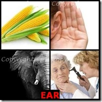EAR- 4 Pics 1 Word Answers 3 Letters