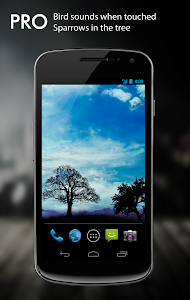 Blue Sky Pro Live Wallpaper v1.1.4