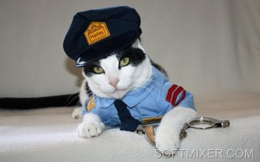 crazy-cat-fashions-corrupt-cop--large-msg-128933303431