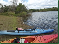 9 mile pond paddle 012