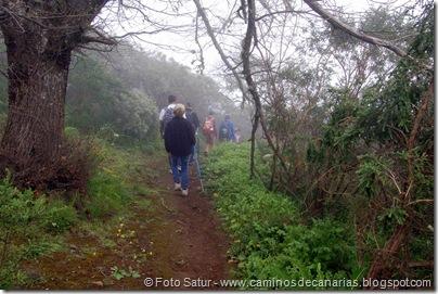 5350 La Pasadera-Roque Carnero