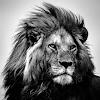 Khurram Chaudhry