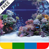 Saltwater Aquarium Guide -FREE