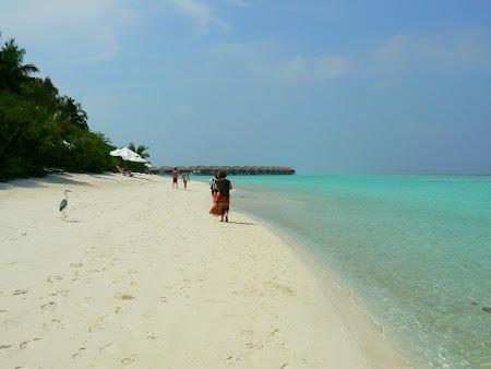18. plaja Velassaru.JPG