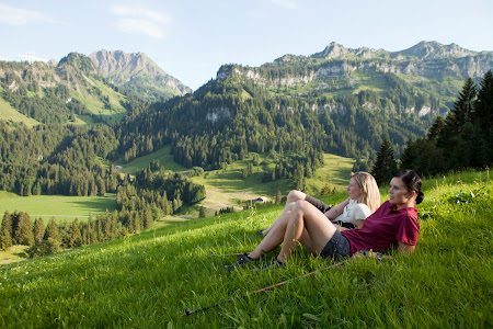 Munti Austria: Bregenzerwald la pasune
