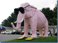 9967 Tennessee, Cookeville - Pink Elephant with giant sunglasses