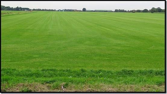 2501grass
