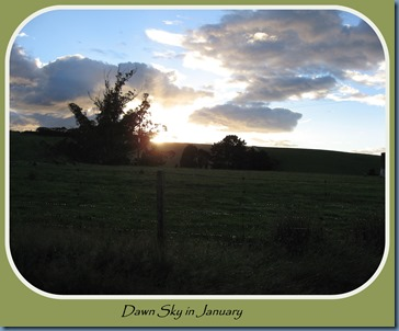 Dawn sky in January #1
