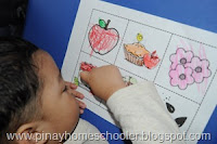 The Life Cycle of an Apple for Preschoolers