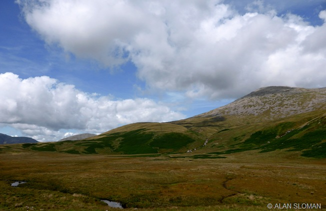 SHAPELY SCA FELL