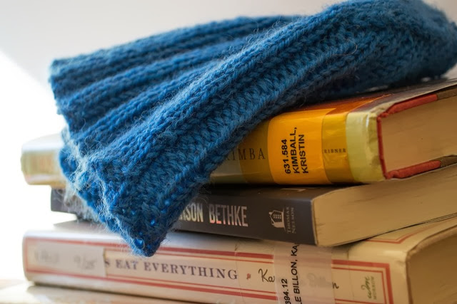 knit and read 2-1