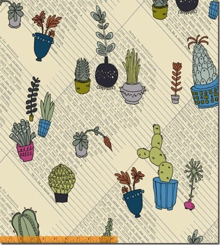 Succulents by Heather Givans