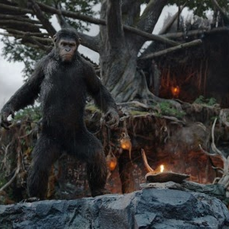 """Dawn of the Planet of the Apes"" In Natural Location Using 3D"